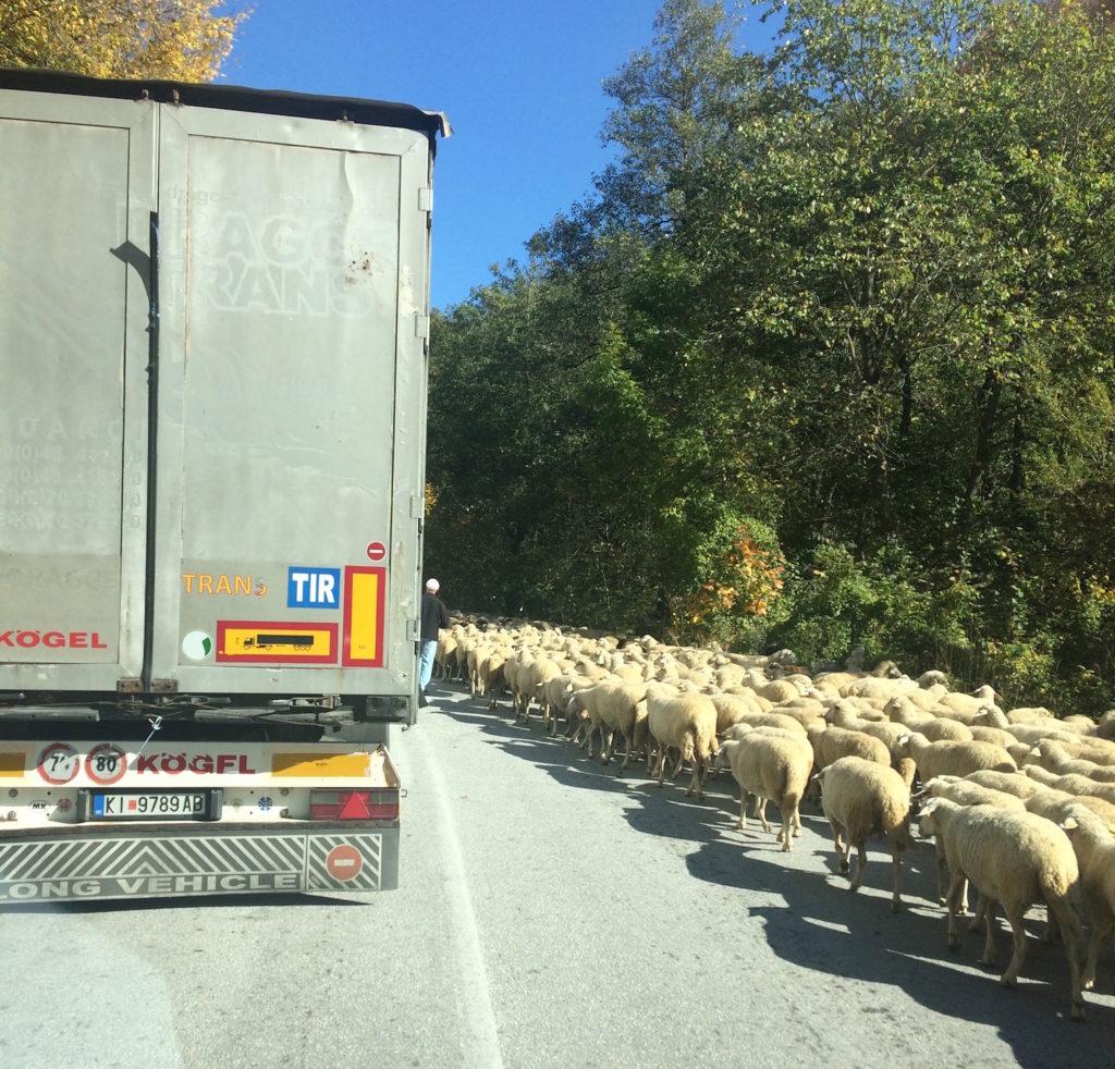 drogi macedonia